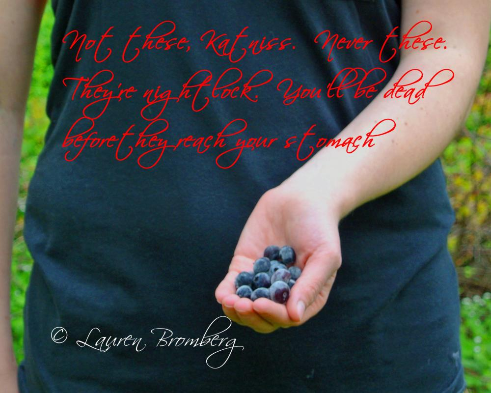 Quotes About Hunger Hunger Games Nightlock Berries Quote 8X10 Inch Photo On Luulla
